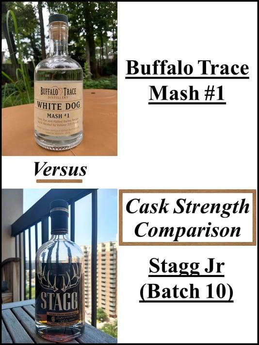 mash #1 vs stagg jr compressed