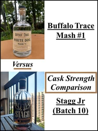 Stagg jr vs mash #1 comparison